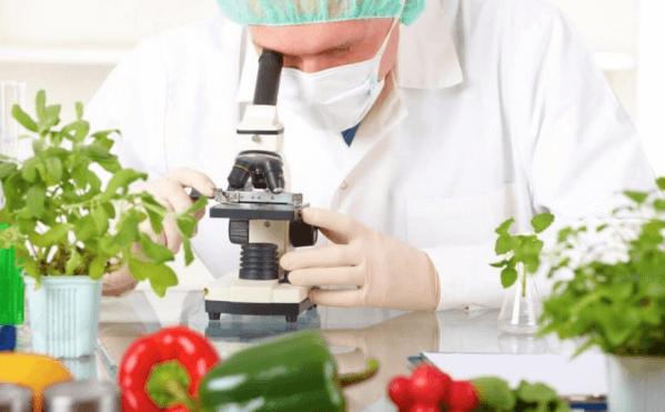 Відповідність нормам харчової безпеки